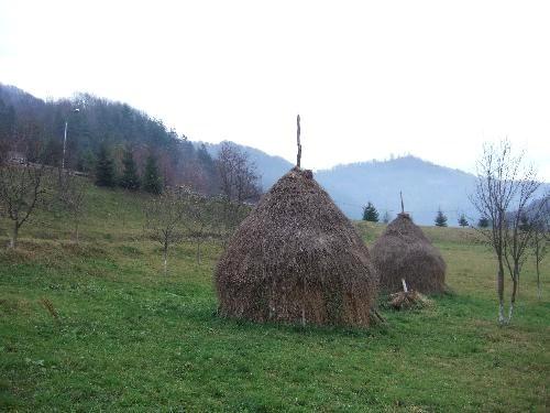 世界一周・ルーマニア_36.JPG