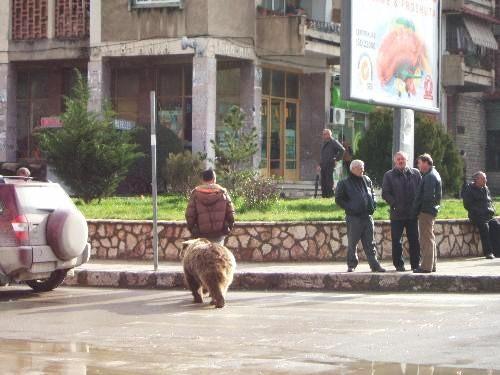世界一周・アルバニア旅行_14.JPG