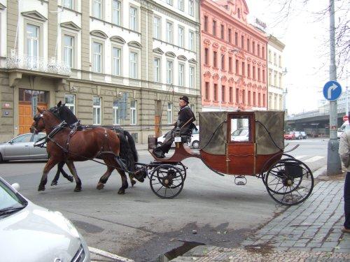 世界一周・チェコ旅行_3.jpg