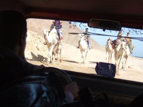 世界一周エジプト旅行23