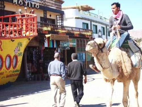 世界一周エジプト旅行9