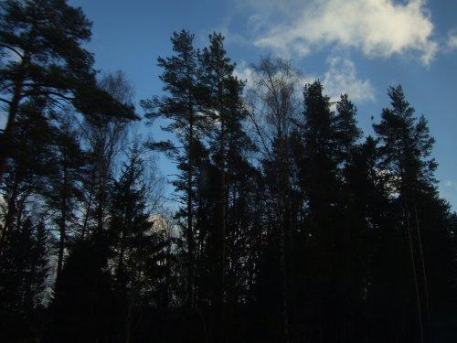世界一周・エストニア_45.jpg