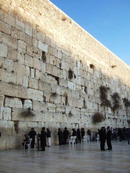 世界一周イスラエル旅行10