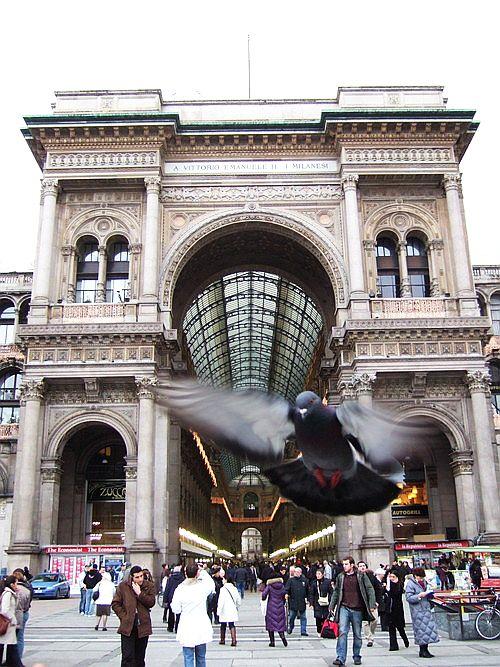 世界一周・ミラノ観光_29.jpg