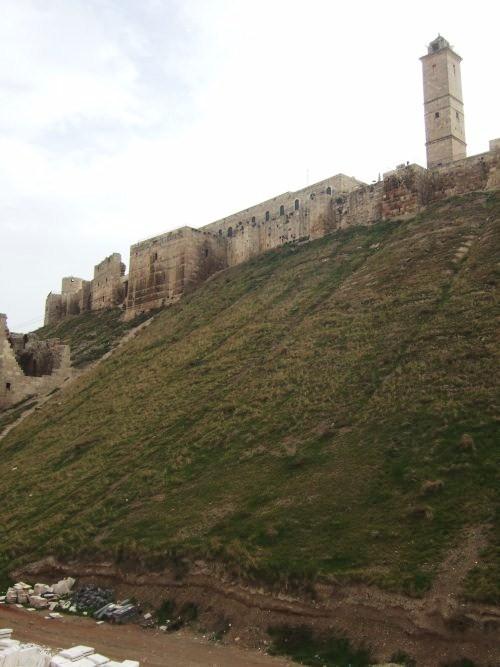 世界一周シリア旅行44