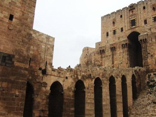 世界一周シリア旅行45