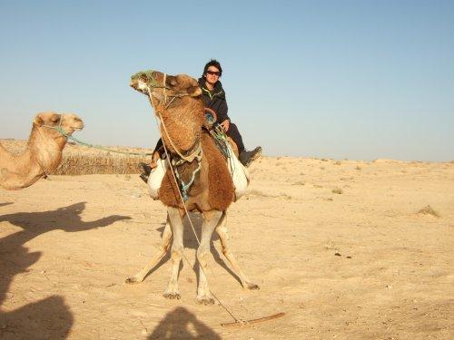 世界一周チュニジア旅行20