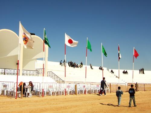 世界一周・サハラフェスティバル観光1_5.jpg