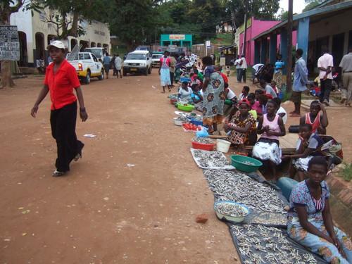 世界一周マラウィ旅行1