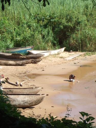世界一周マラウィ旅行2