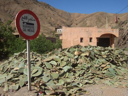 世界一周モロッコ旅行19
