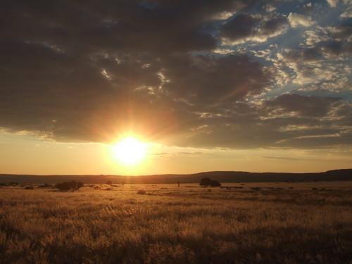 世界一周ナミビア旅行12