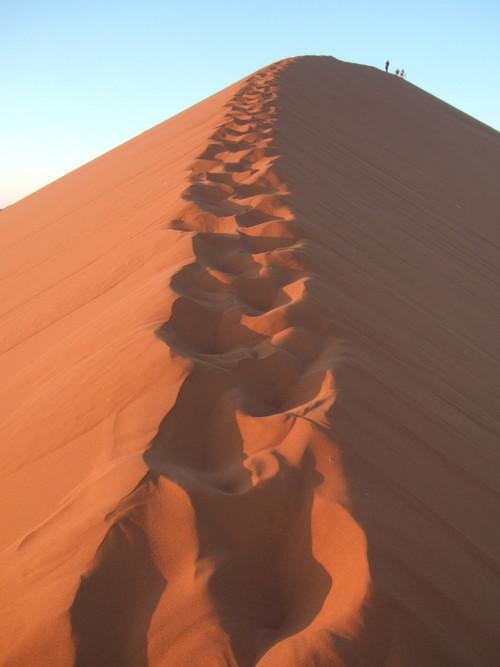 世界一周ナミビア旅行14