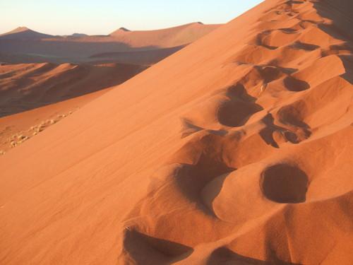 世界一周ナミビア旅行15