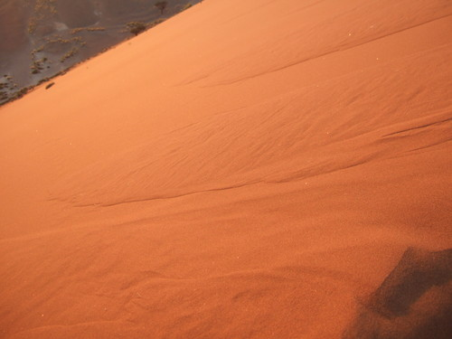世界一周ナミビア旅行16