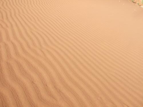 世界一周ナミビア旅行25