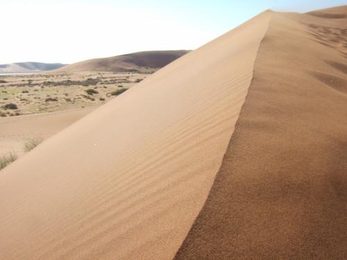世界一周ナミビア旅行26