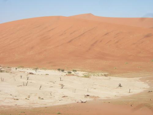 世界一周ナミビア旅行28
