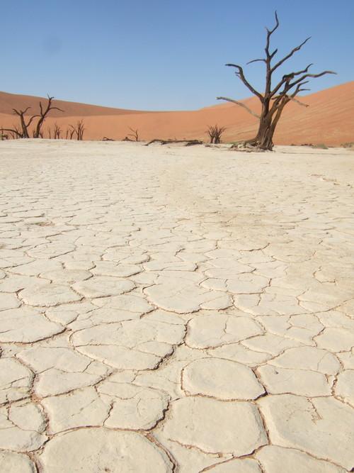 世界一周ナミビア旅行30