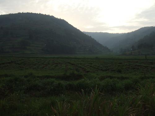 世界一周ルワンダ旅行1
