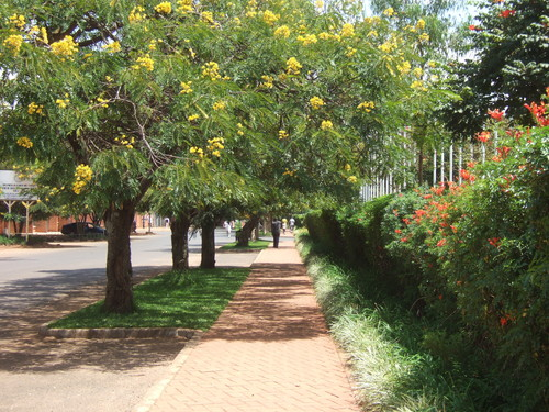 世界一周ルワンダ旅行3
