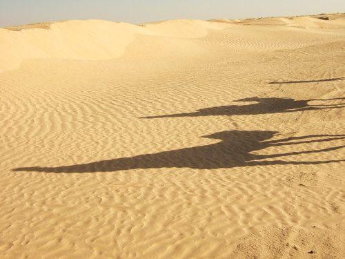 世界一周・サハラ砂漠ツアー1_11.jpg