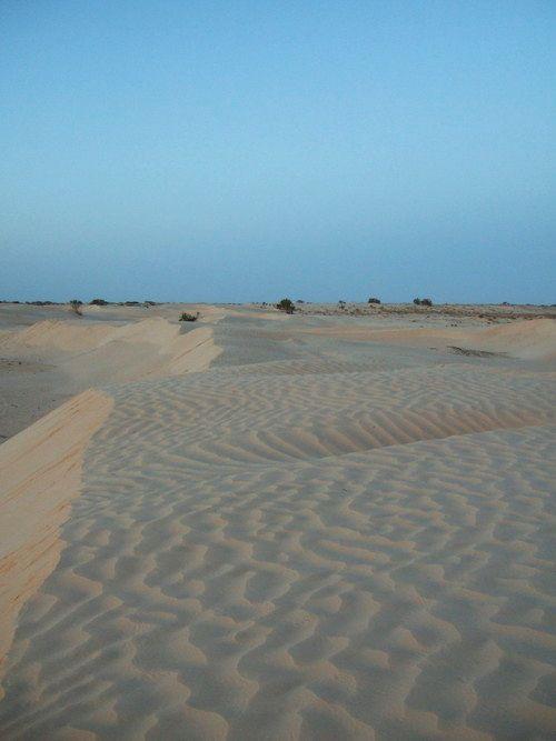 世界一周・サハラ砂漠ツアー1_23.jpg