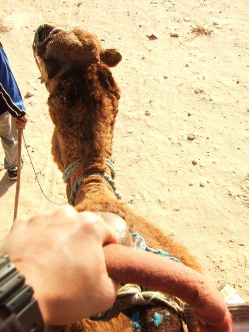 世界一周・サハラ砂漠ツアー1_4.jpg