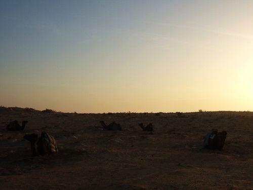 世界一周・サハラ砂漠ツアー1_42.jpg