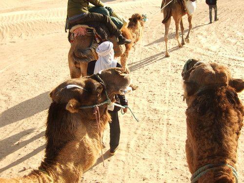 世界一周・サハラ砂漠ツアー1_8.jpg