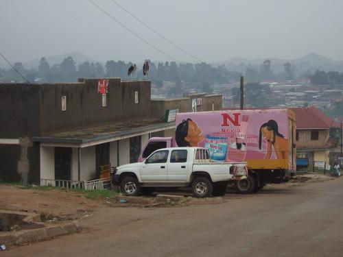 世界一周タンザニア旅行1