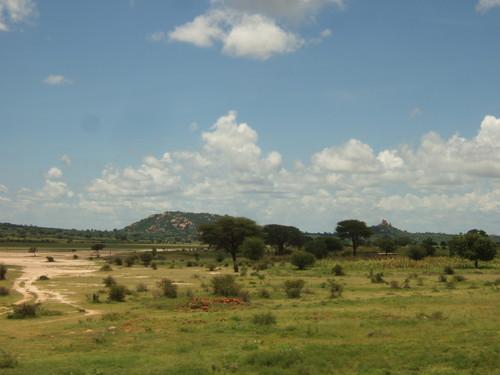 世界一周タンザニア旅行16