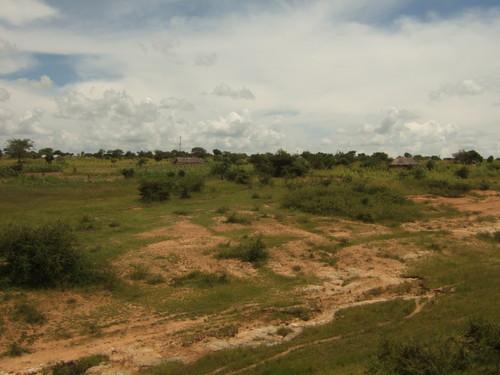 世界一周タンザニア旅行30