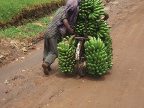 世界一周ウガンダ旅行25