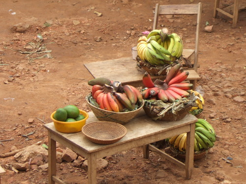 世界一周ウガンダ旅行27
