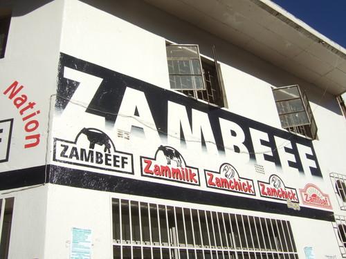 世界一周ザンビア旅行9