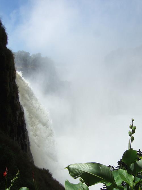 世界一周ジンバブエ旅行1