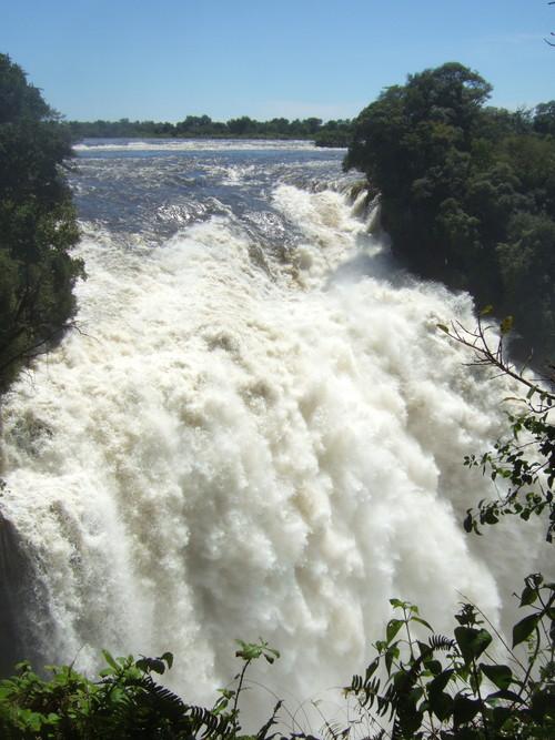世界一周ジンバブエ旅行8
