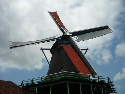 世界一周オランダ旅行8
