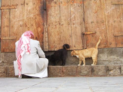 世界一周・世界一周イエメン観光_27.jpg
