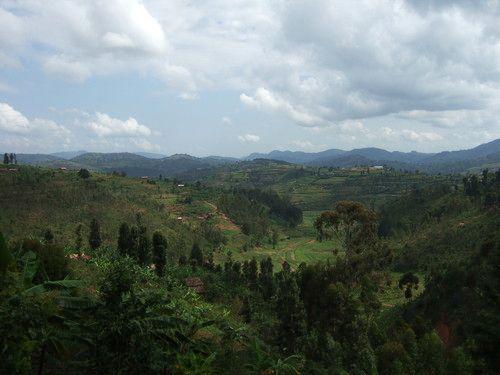 世界一周ルワンダ観光_30.jpg