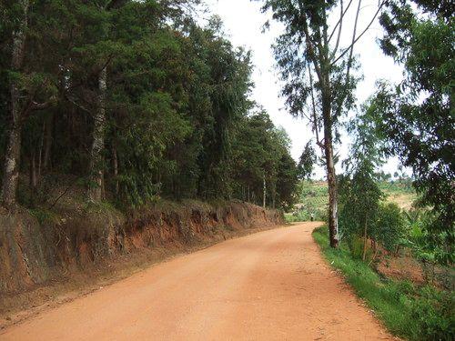 世界一周ルワンダ観光_32.jpg