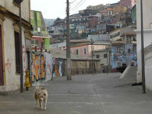 世界一周チリ旅行4