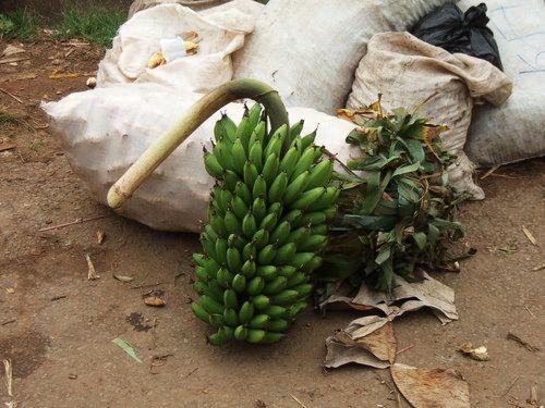 世界一周・ウガンダ旅行_32.jpg