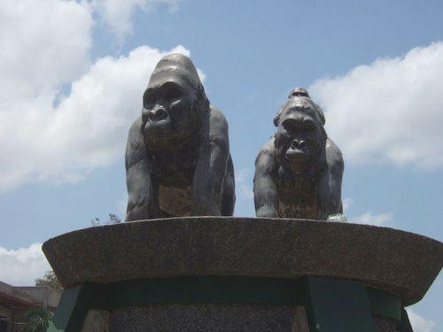 世界一周・ルワンダ旅行_27.jpg