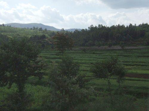 世界一周・ルワンダ旅行_40.jpg