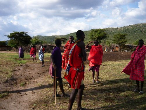 世界一周マサイマラ国立公園サファリ_27.jpg