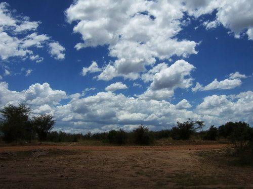 世界一周マサイマラ国立公園サファリ_4.jpg