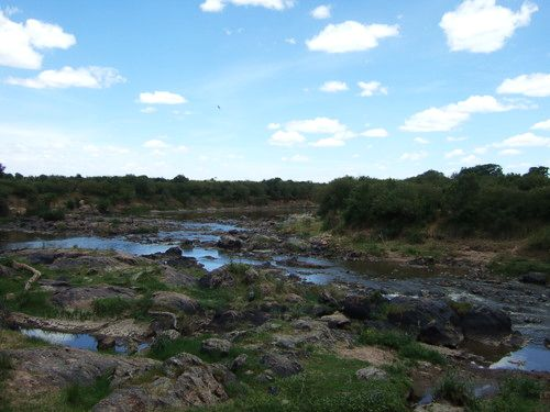 世界一周マサイマラ国立公園サファリ_8.jpg