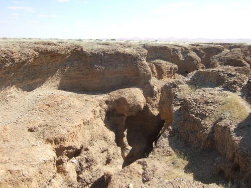 世界一周ナミブ砂漠1_13.jpg
